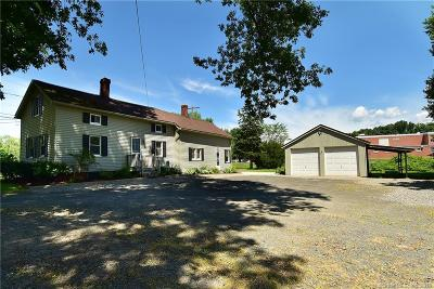Suffield Single Family Home For Sale: 318 Mountain Road
