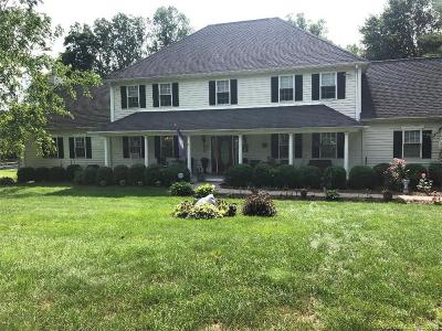 Monroe Single Family Home For Sale: 1093 Monroe Turnpike