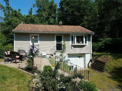 Naugatuck Single Family Home For Sale: 1034 Andrew Mountain Road