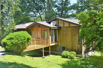 New Milford Single Family Home For Sale: 21 Overlook Drive