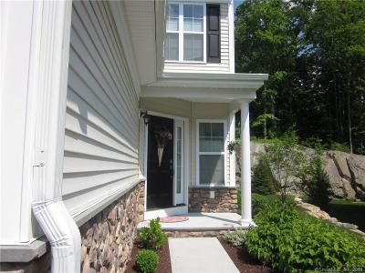 Bethel Condo/Townhouse For Sale: 38 Beacon Hill Terrace #38