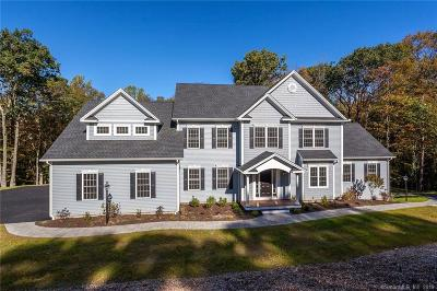 Darien, Easton, Fairfield, New Canaan, New Fairfield, Newtown, Norwalk, Redding, Ridgefield, Shelton, Stamford, Trumbull, Westport, Beacon Falls, Branford, Guilford, Milford, Southbury, West Haven Single Family Home For Sale: Lot45 Shane Drive