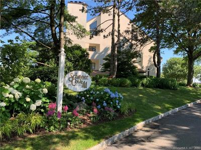 Stamford Condo/Townhouse For Sale: 89 Harbor Drive #208