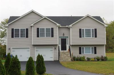 New Britain Single Family Home For Sale: 246 Slater Road