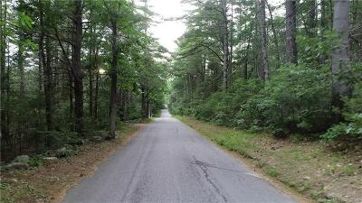 Windham County Residential Lots & Land For Sale: 44 Blood Road