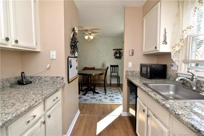 New Milford Condo/Townhouse For Sale: 6 Old Farms Lane #6