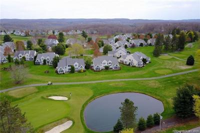 Cromwell Single Family Home For Sale: 4 Bonnie Briar #4