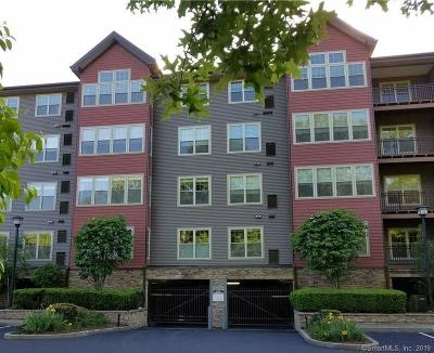 Norwalk Condo/Townhouse For Sale: 100 Richards Avenue #313