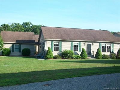 Windham County Condo/Townhouse For Sale: 2 Owls Nest Court #2