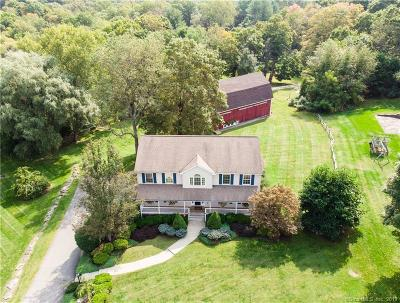 New Milford Single Family Home For Sale: 4 Grandview Lane