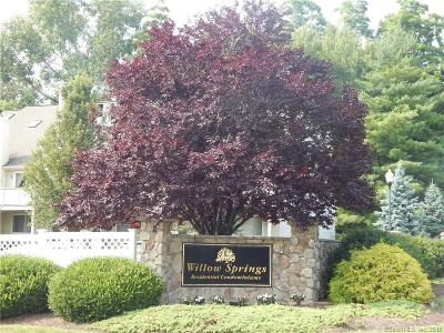New Milford Condo/Townhouse For Sale: 122 Willow Springs #122