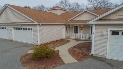 Windham County Condo/Townhouse For Sale: 87 Sachem Drive
