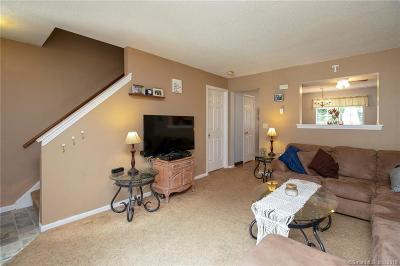 Thomaston Condo/Townhouse For Sale: 197 Pine Hill Road #3B