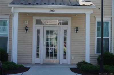 Danbury Condo/Townhouse For Sale: 227 Center Meadow Lane #227
