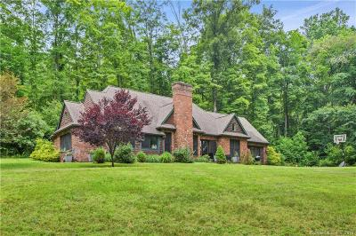 New Milford Single Family Home For Sale: 390 Kent Road