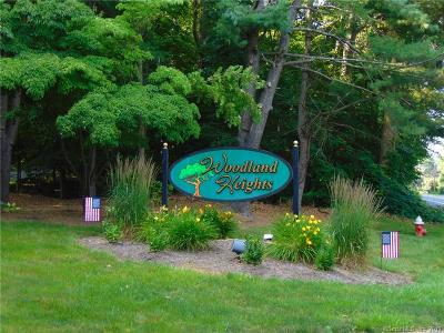 Cromwell Condo/Townhouse Coming Soon: 166 Woodland Drive #166