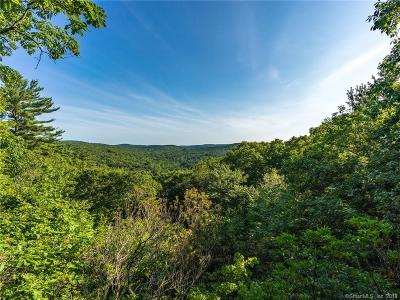 Single Family Home For Sale: 300 Music Mountain Road