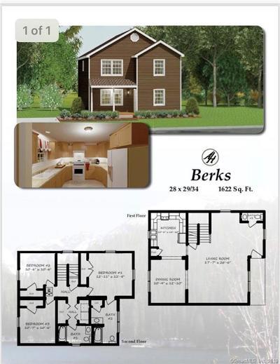 Danbury Single Family Home For Sale: 7 Olive Street
