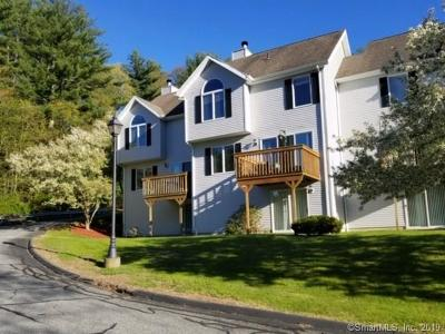Windham County Condo/Townhouse For Sale: 502 Whetstone Mills #502