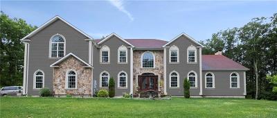 New Milford Single Family Home For Sale: 10 Elizabeth Lane