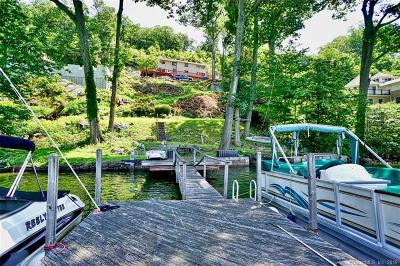 Danbury Single Family Home For Sale: 15 Waterview Drive
