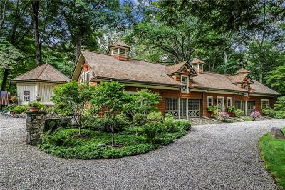 Ridgefield Single Family Home For Sale: 195 Old Branchville Road