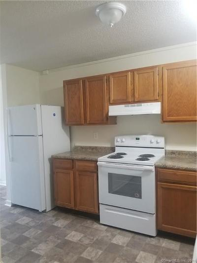 Norwich Rental For Rent: 91 South Second Avenue #2
