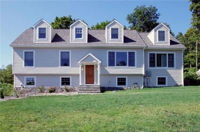 Fairfield County Single Family Home For Sale: 69 Ramapoo Road