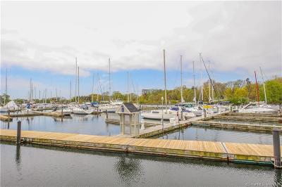 Stamford Condo/Townhouse For Sale: 43 Harbor Drive #100