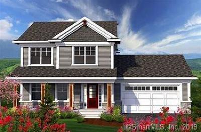 Thompson Single Family Home For Sale: Lot 1 Madison Avenue