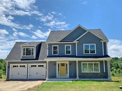 Thompson Single Family Home For Sale: Lot 14 Madison Avenue