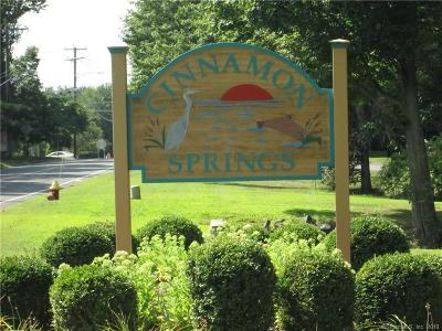 South Windsor Condo/Townhouse For Sale: 9 Cinnamon Springs #9