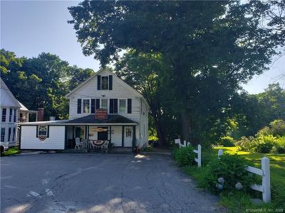RI-Kent County, RI-Providence County, CT-Windham County, Windham County, Worcester County Commercial For Sale: 258 Main Street