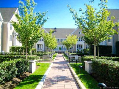 Stamford Condo/Townhouse For Sale: 77 Havemeyer Lane #323