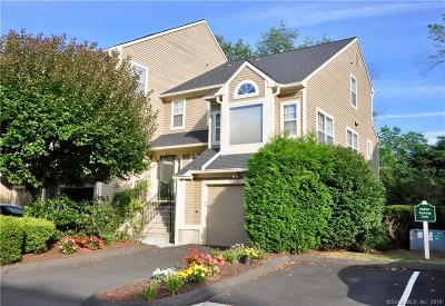 Trumbull Condo/Townhouse Show: 221 Algonquin Trail #221