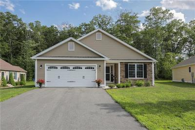 Windham County Condo/Townhouse For Sale: 2 Starling Court #2