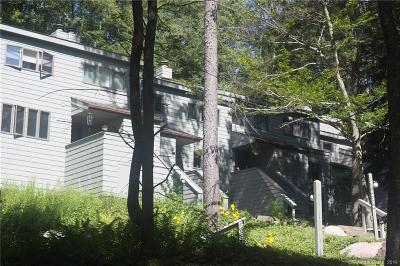 Litchfield County Condo/Townhouse For Sale: 433 Trailsend Drive #433