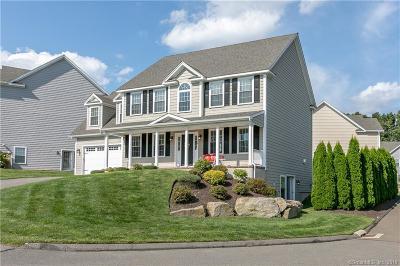 Shelton Single Family Home For Sale: 25 Brant Point #25