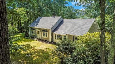 Bethel Single Family Home For Sale: 136 Putnam Park Road