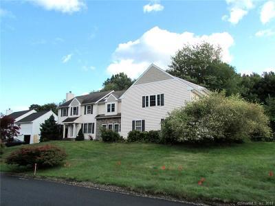 Torrington Single Family Home For Sale: 236 Ginger Lane