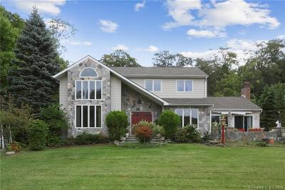 New Milford Single Family Home For Sale: 799 Candlewood Lake Road South