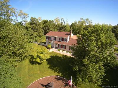New Fairfield Single Family Home For Sale: 118 Gillotti Road