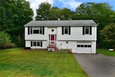 Stafford Single Family Home For Sale: 13 Jennifer Lane