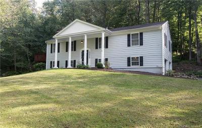 Fairfield County Single Family Home For Sale: 29 Nursery Road
