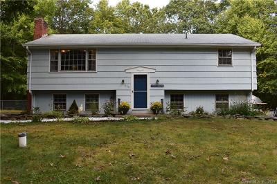 Tolland Single Family Home For Sale: 160 New Road