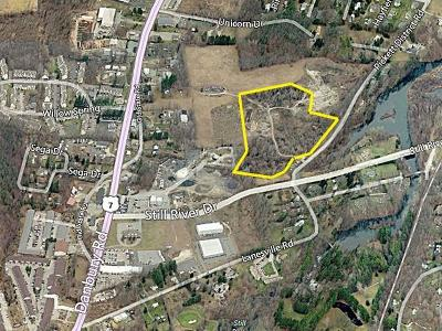 New Milford Residential Lots & Land For Sale: 260 Pickett District Road
