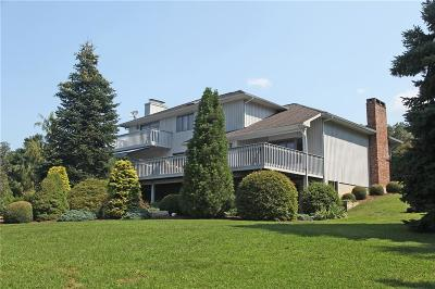 Roxbury Single Family Home For Sale: 138 Southbury Road