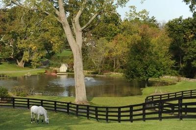 Fairfield County Single Family Home For Sale: 9-11 Old Stagecoach Road