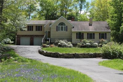 Norwalk Single Family Home For Sale: 141 Fillow Street
