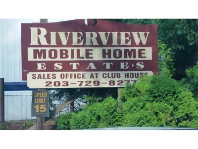 Naugatuck Single Family Home For Sale: 92a Thunderbird Drive